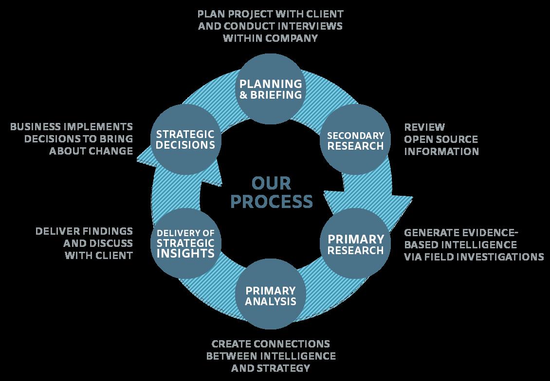Ivy Strategy Process Chart